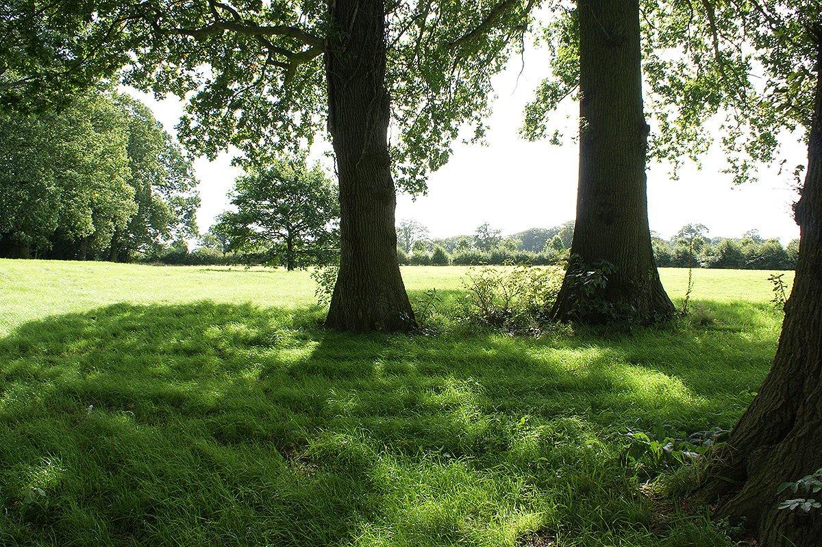 The grounds around Bessingham Manor.