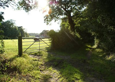 fields-outside-bessingham-manor